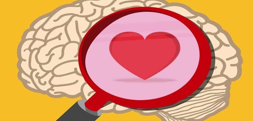 desenho de cérebro com coração no meio